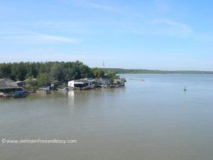 mangrove-can-gio-vietnam