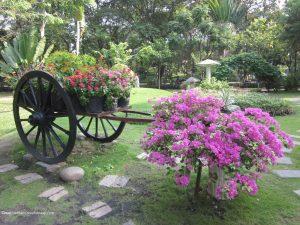 parc-cong-vien-hoang-van-thu-saigon-vietnam