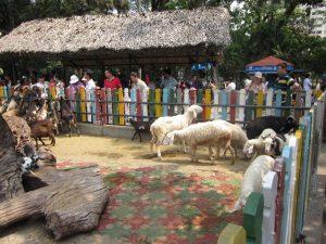 zoo-ho-chi-minh-city-d1-vietnam